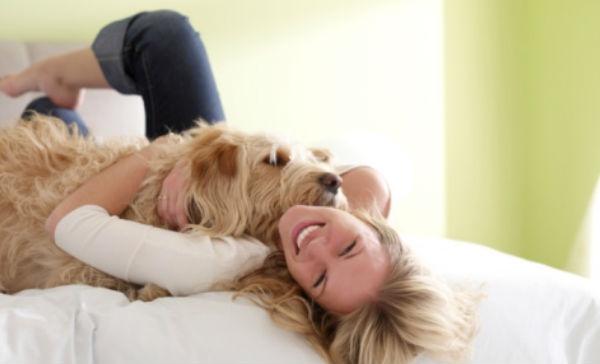 5 beneficios emocionales que ganas al tener un perro salud180 - Perros para tener en casa ...