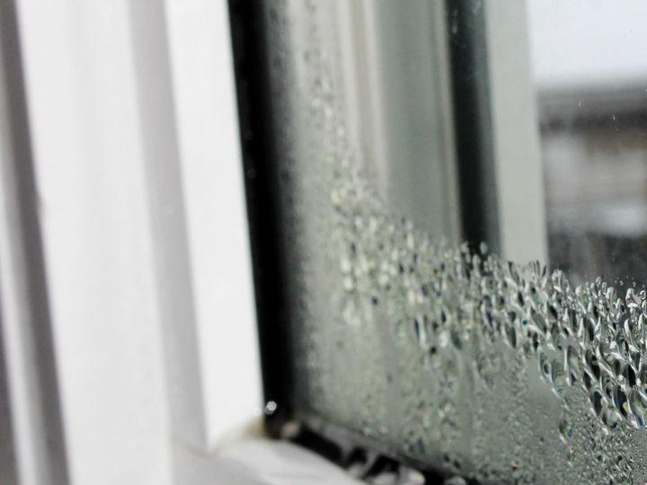 C mo eliminar la humedad de la casa salud180 - Humedad relativa en casa ...