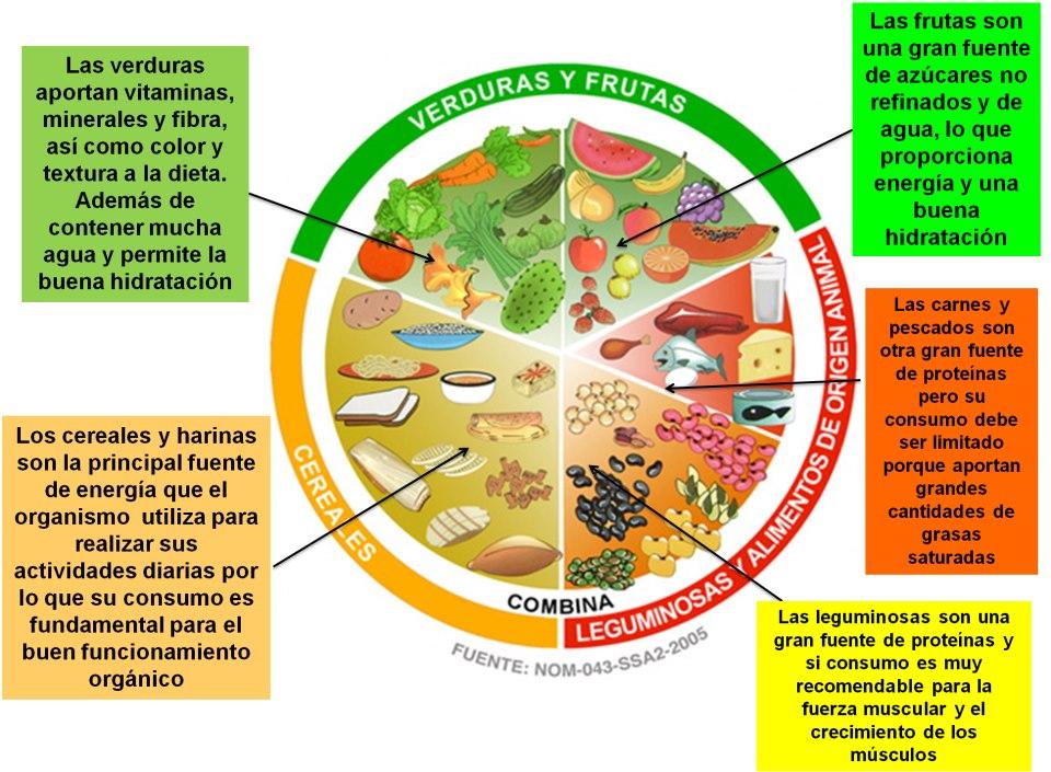 dieta correcta del plato del buen comer
