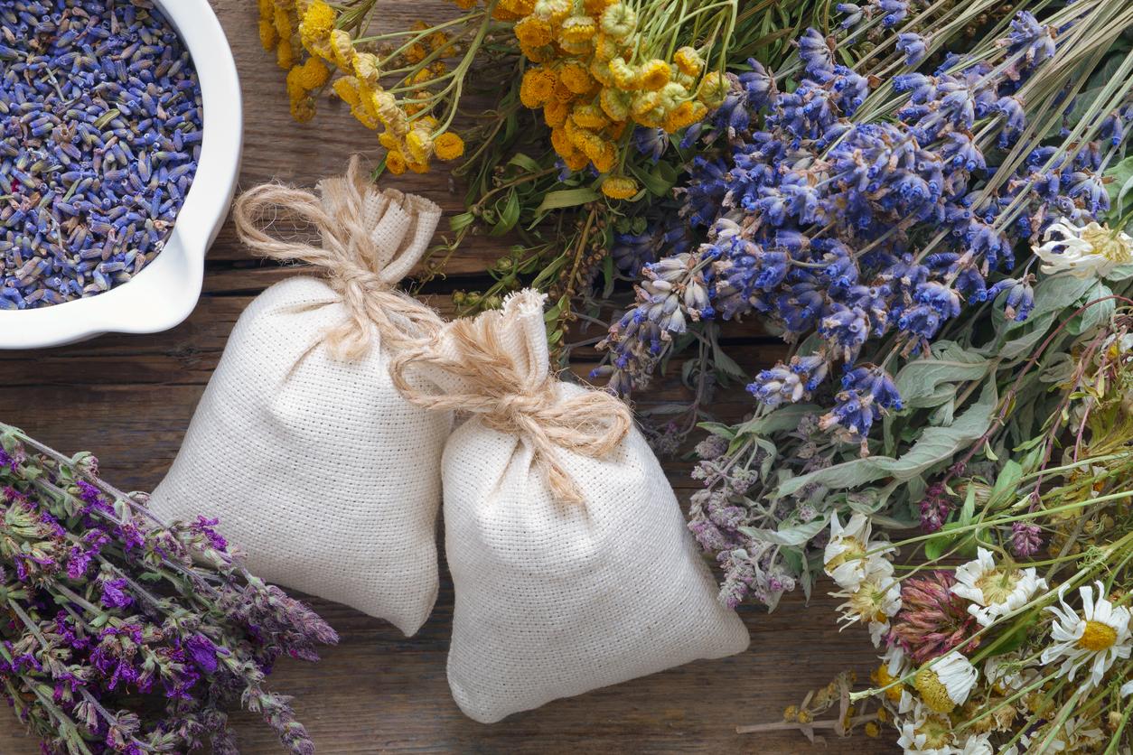 Coloca algunas bolsitas de lavanda en cada rincón de tu hogar