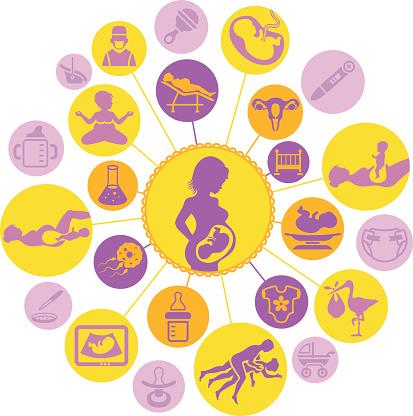 Probabilidad de quedar embarazada un dia antes de la menstruacion