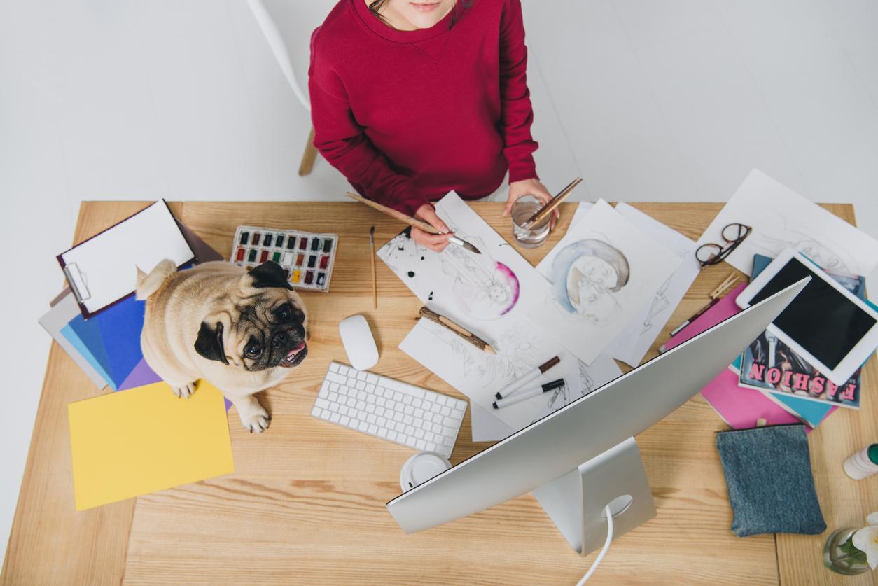 Llevar a tu perro a la oficina reduce tus niveles de estrés y mejora tu productividad