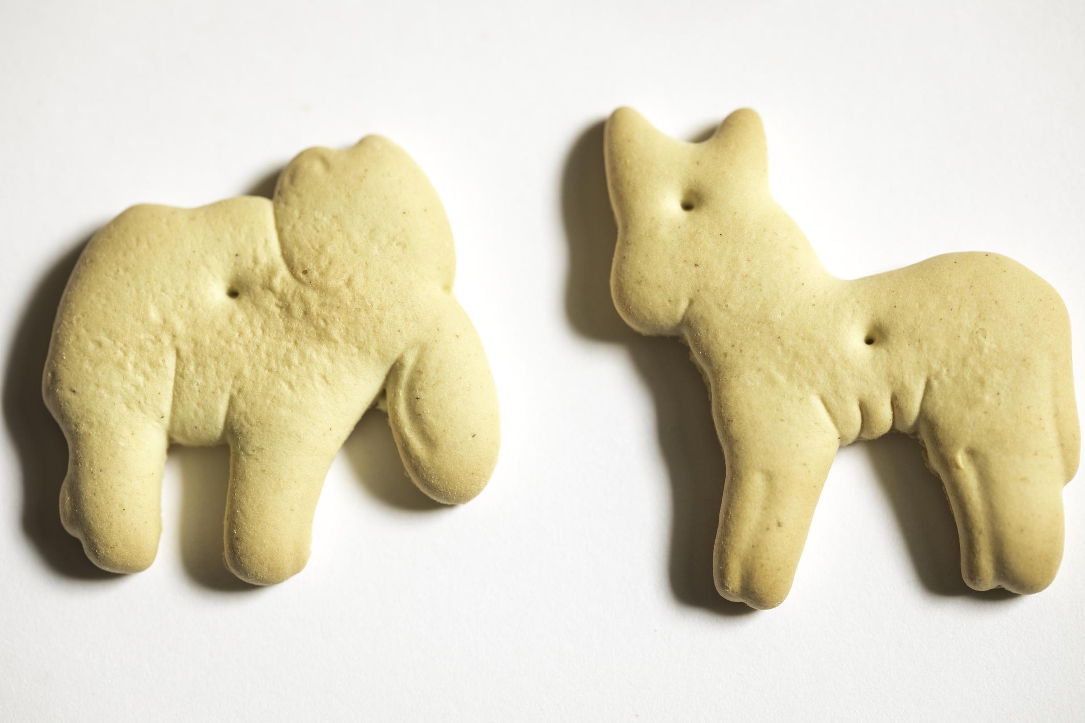 curiosidades de las galletas de animalitos