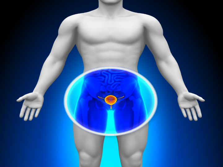 planta_belladona_demuestra_sus_efectos_contra_cancer_de_prostata_ipn_salud.jpg