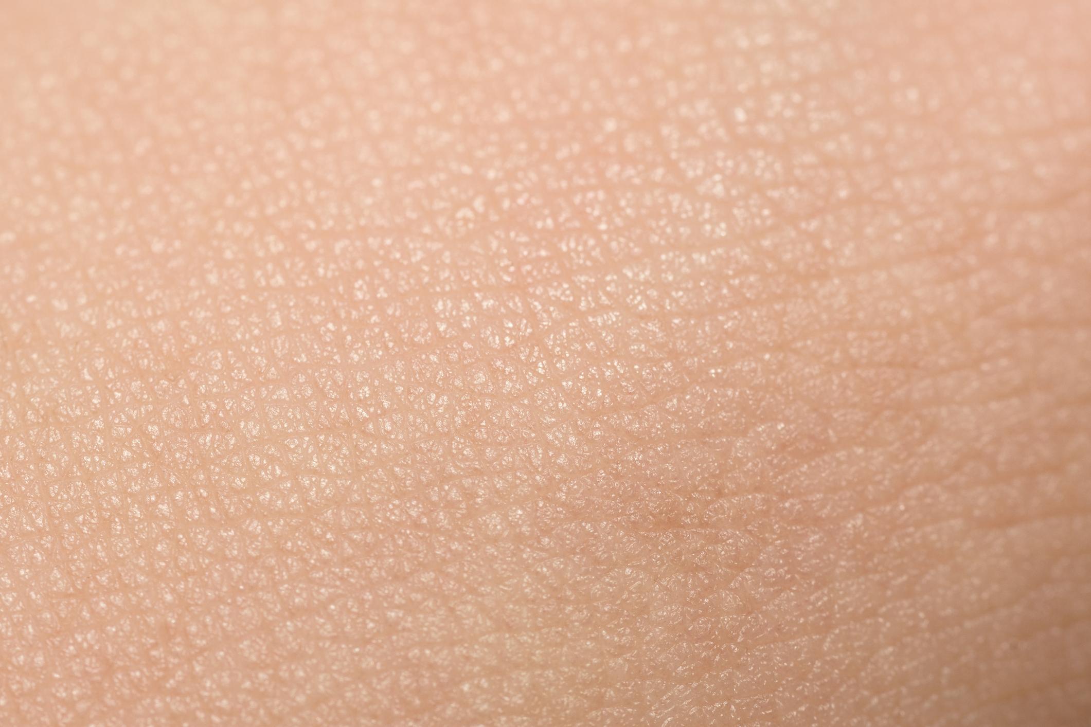 Células ayudan a regenerar la piel