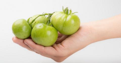 alimentos ricos en acido urico tomate