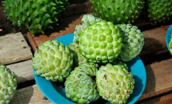 frutas contra cancer de mama