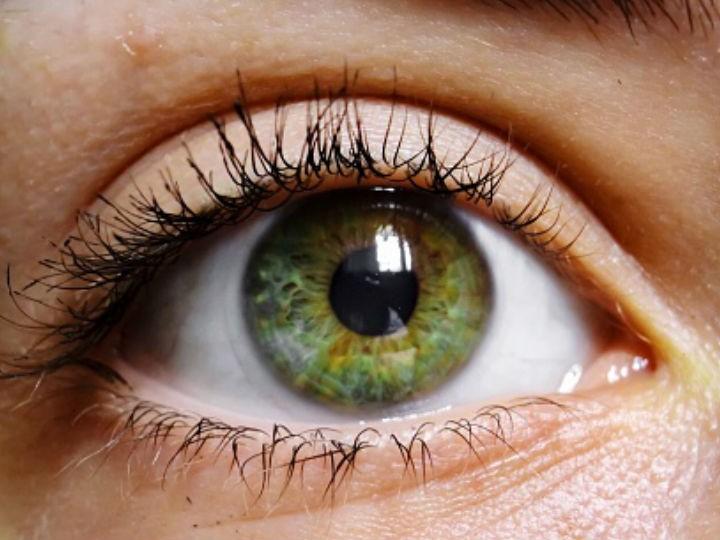 5 Sorprendentes Curiosidades Sobre Las Personas Con Ojos Verdes