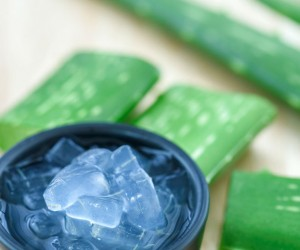 """Aloe vera congelado, lo más """"in"""" para tu belleza y salud...¡Sácale provecho!"""