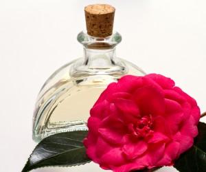 Usos del aceite de camelia en pro de tu belleza