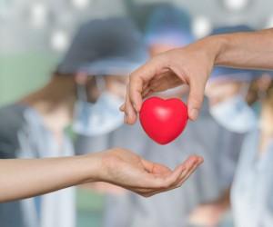 Conoce todo acerca de la donación de órganos