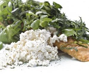 alimentos q causan gastritis
