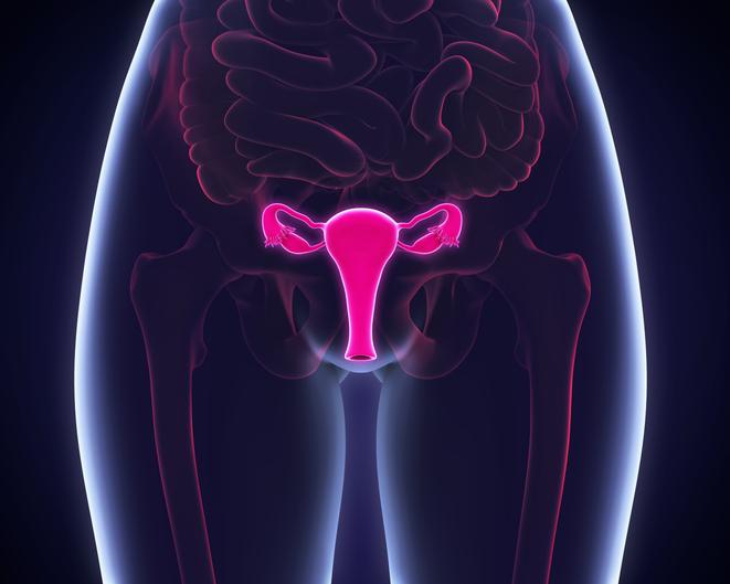 Vph provoca cáncer cervicouterino/